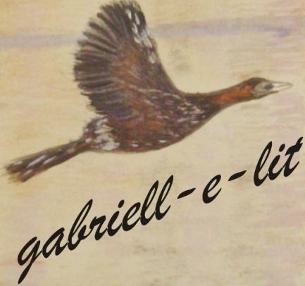 gabriell-e-lit